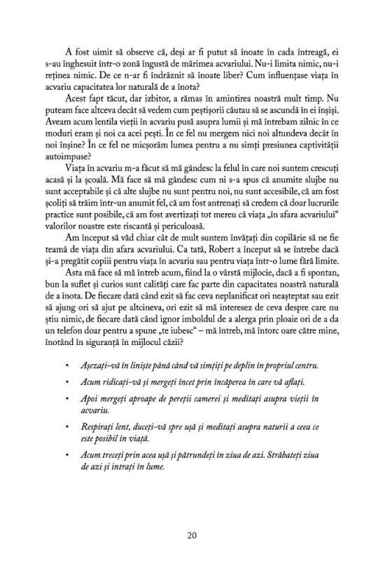 Reducere de pret Cartea trezirii - Mark Nepo