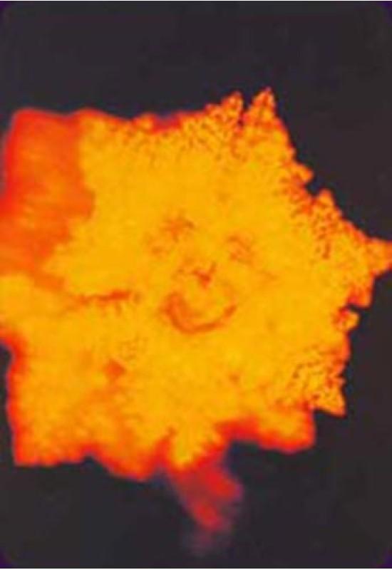 Reducere de pret Oracolul Cristalelor de Apă - Masaru Emoto