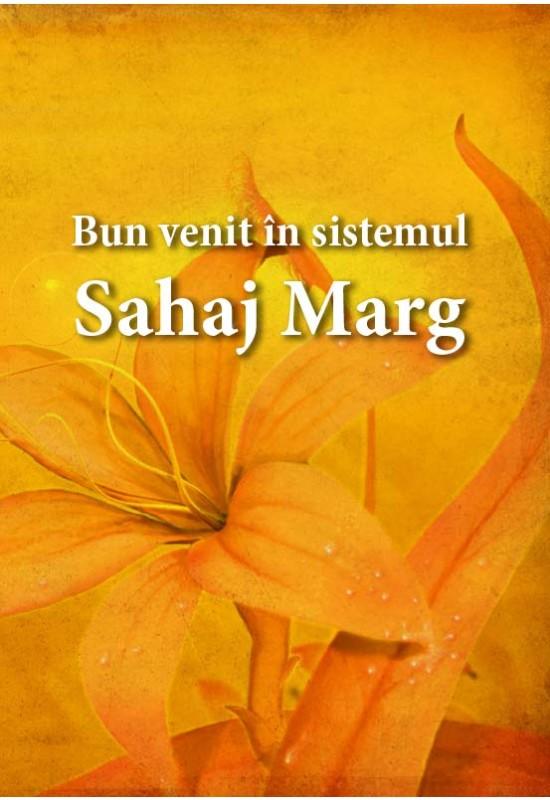 Bun venit în sistemul Sahaj Marg