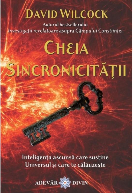 Reducere de pret Cheia Sincronicității - Inteligența ascunsă care susține Universul...