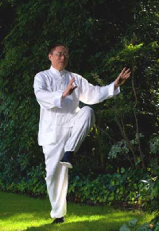 Reducere de pret Înțelepciunea sufletului- Zhi Gang Sha